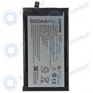 Lenovo Vibe P1 Battery BL244 4900/5000mAh BL244