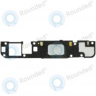 Oppo R5 Speaker module